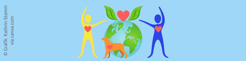 Grafik via canva.com Experimente mit dem Herzen und das 80/20 Prinzip Coaching Oase Heartify